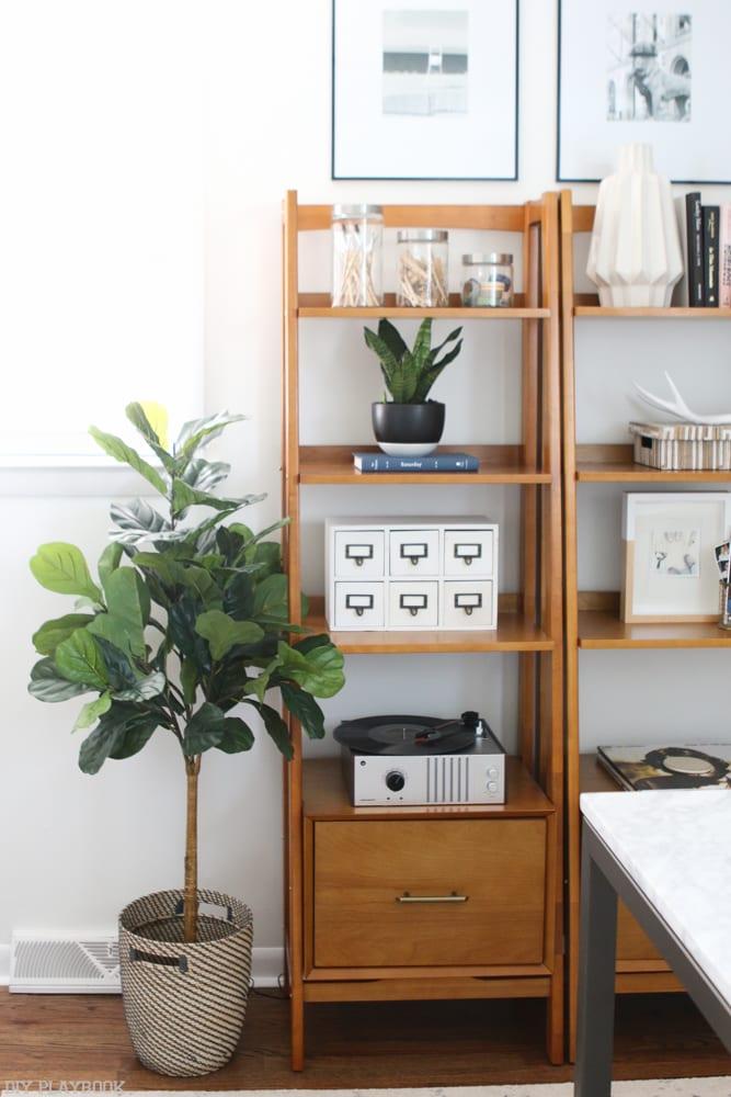Fiddle_Leaf_shelves