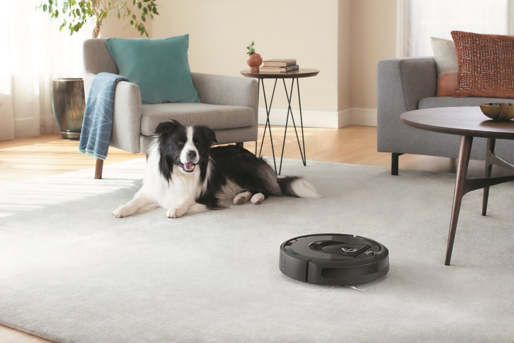 Roomba+i7_Lifestyle_Dog_Living+Room