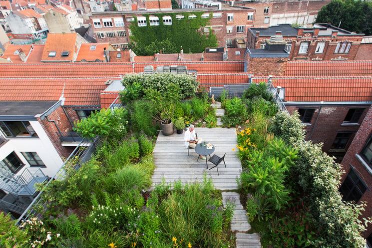 getuigenissen-new-luxury-rooftop-gardens-3n1a8410
