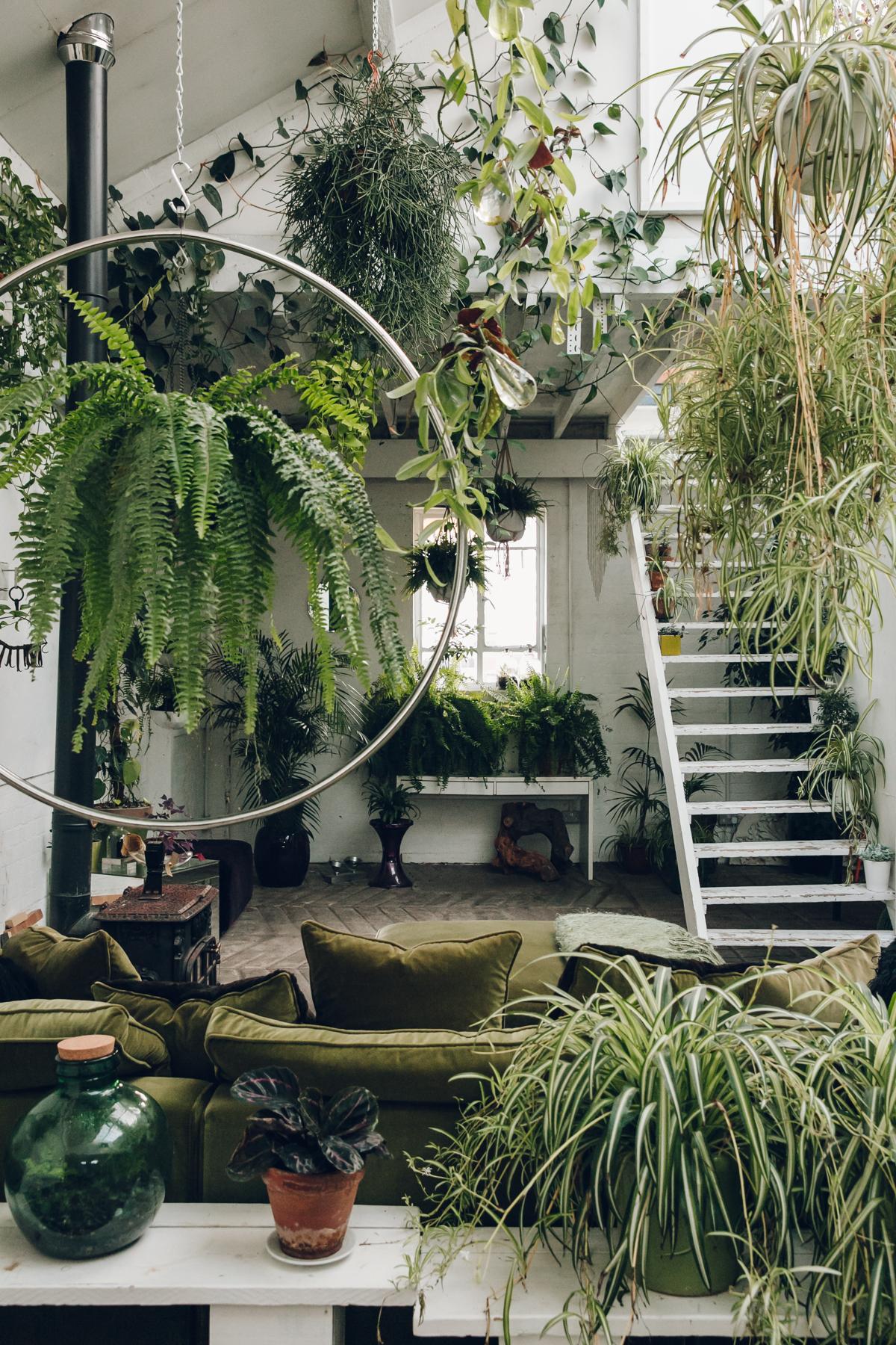 plantseverywhereinsideclaptontram-alightwarehousespace